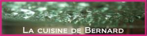 bernard 300x74 Blogs préférés