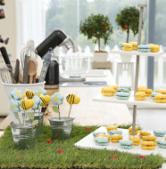 Anne-Sophie-meilleur-patissier-macarons-fleurs-abeilles