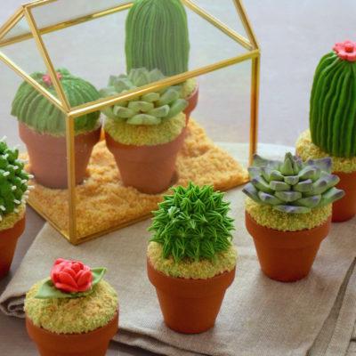 Cactus mania – Cupcakes cactus