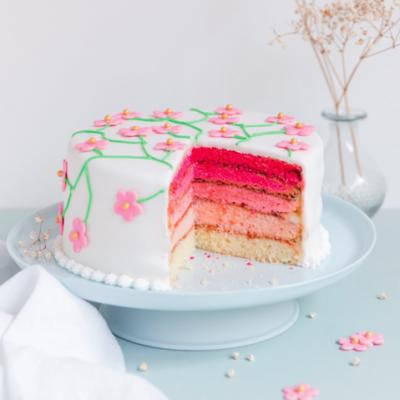 Pink rainbow cake (gâteau arc-en-ciel)